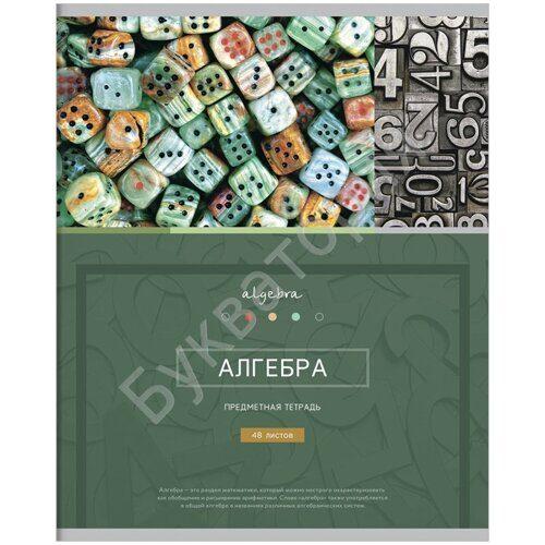 """Тетрадь предметная ArtSpace  """"Алгебра -  Новый век"""", А5, 48 листов, клетка, арт. Тп48ТЛКМк_17140"""