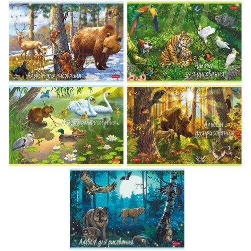 """Альбом для рисования Hatber """"В сказочном лесу"""", А4, 20л., на скрепке"""