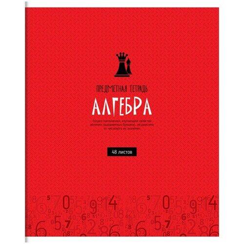 """Тетрадь предметная ArtSpace """"Оттенки знаний"""" - Алгебра, 48 листов, ВД-лак, арт. Тп48к_24056"""