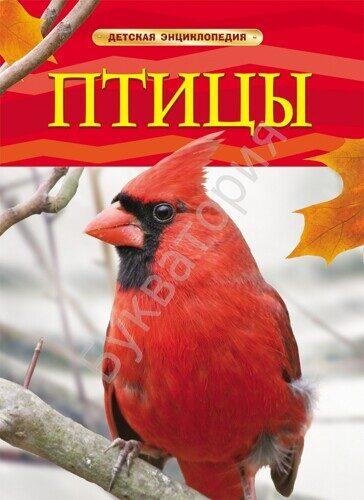 Детская энциклопедия. Птицы