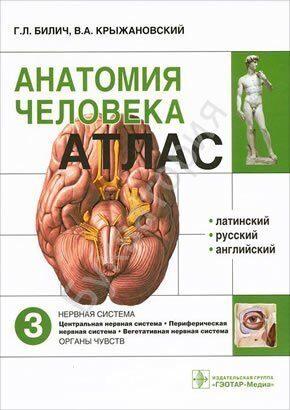 Атлас анатомии человека. В 3-х томах. Том 3 Нервная система
