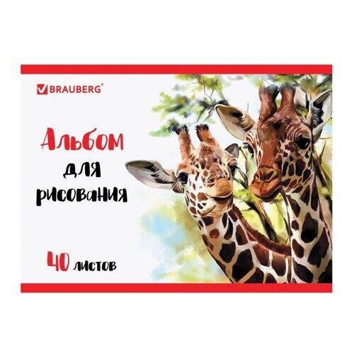 "Альбом для рисования BRAUBERG ""Жирафы"" А4, 40л, на спирали, арт. 105104"