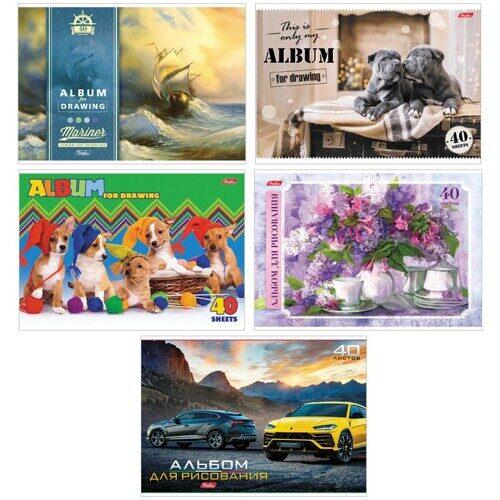 """Альбом для рисования HATBER """"Ассорти"""", А4, 40 л, скоба, обложка картон, арт.40А4В, A274149"""
