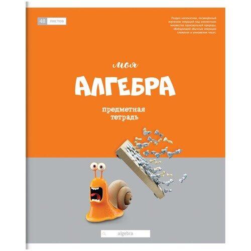 """Тетрадь предметная ArtSpace """"Большая перемена"""" - Алгебра, 48 листов, арт. Тп48ГЛк_24032"""