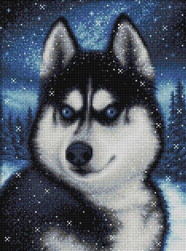 """Картина стразами Алмазная живопись """"Хаски в снегу"""", арт. АЖ-1804"""