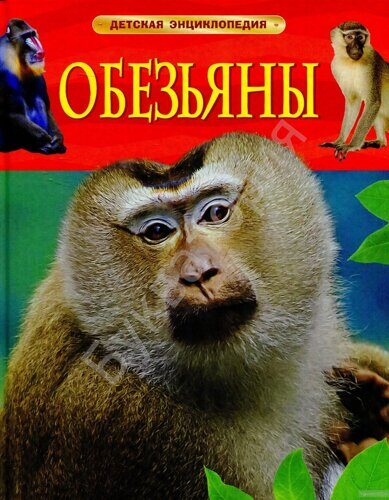 Детская энциклопедия. Обезьяны