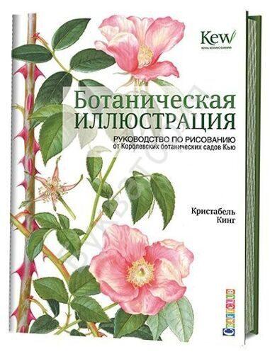 Ботаническая иллюстрация: руководство по рисованию