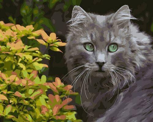 "Холст с красками по номерам ""Серый кот"", 40х50см"